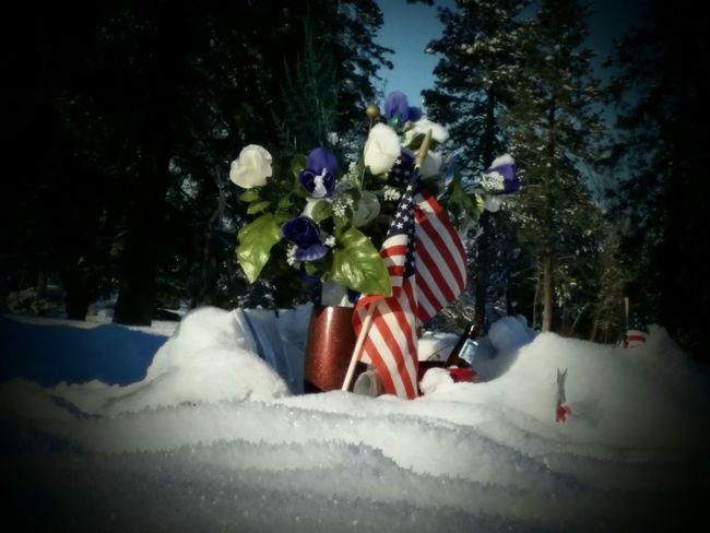 Rememberance Remembering Remember Veterans Day Memorial Day Memorial Honoring The Brave US Flag Honoring The Fallen Honoring Veterans January 2016