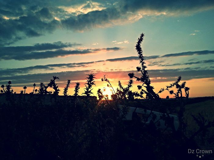 Check This Out Sunset_madness Photography Galaxys3 📷 🔘