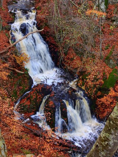 Waterfall Water Scenics Autumn Nature Forest Motion Environment River No People Beauty In Nature Outdoors Tranquility Travel Destinations Rapid Beauty Day Power In Nature Tree Sweden Nature Sweden Skåne Forsakar Longexposurephotography Longexposure