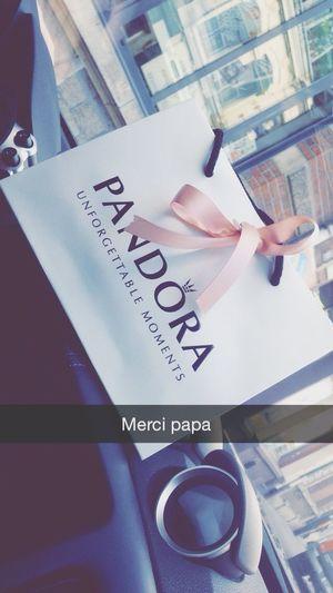 Pandora Pandora Bracelet  Pandora Charms Pandora