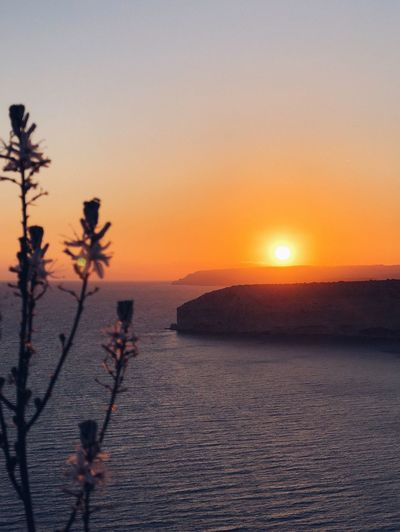 Sunset and flowers Cliff Red Flower Sun Zapalo Episkopi Cyprus Sunset Beauty In Nature Scenics Nature Sun Tranquil Scene Sea Tranquility No People Sky Water Outdoors Sunlight