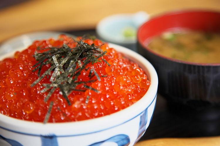 いくら丼 salmon roe Salmon Roe Lunch Japan Photography Wakasa Fukui Prefecture From My Point Of View Capture The Moment
