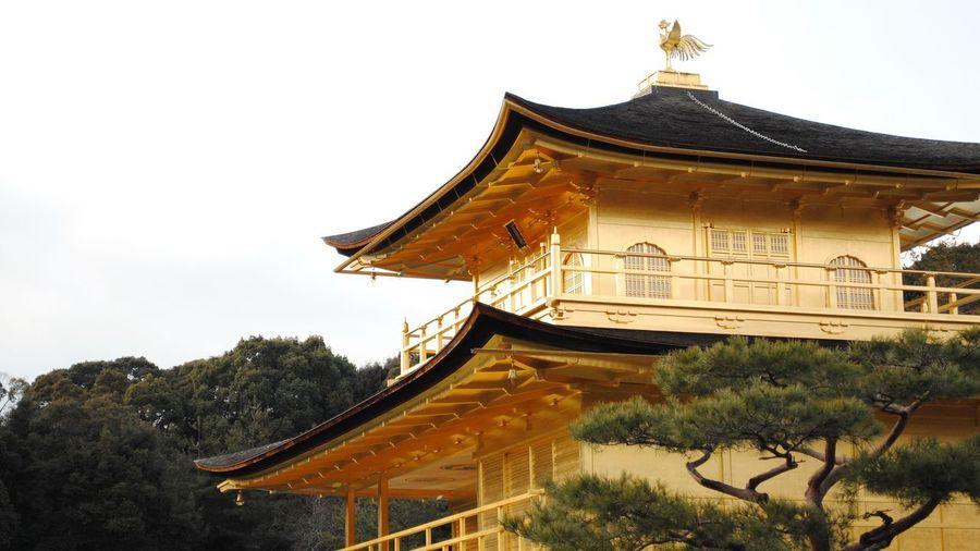Kinkakuji Temple, Kyoto, Japan Golden Golden Pavilion Temple Japan Kinkakuji Temple Architecture Building Exterior Built Structure Kinkakuji Kyoto Religion Spirituality Temple Temple - Building