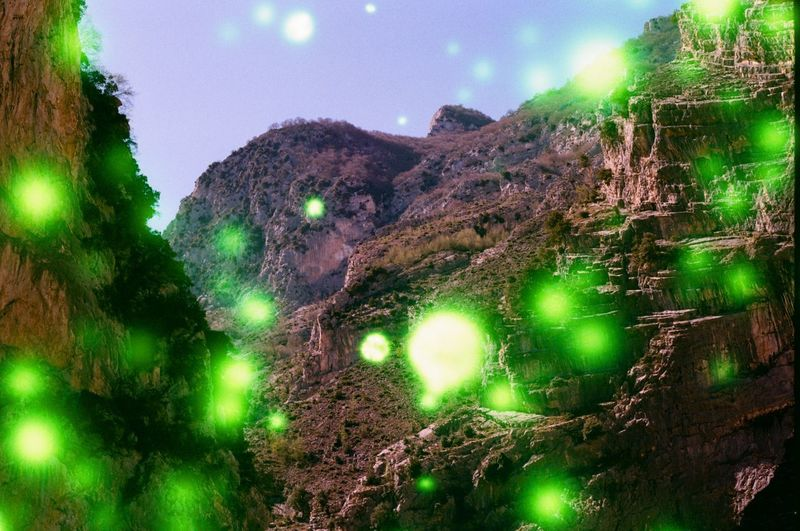 Beauty In Nature Forest Green Color Growth Illuminated Land Lens Flare Low Angle View Mountain Nature Night No People Outdoors Plant Scenics - Nature Sky Tranquil Scene Tranquility Tree