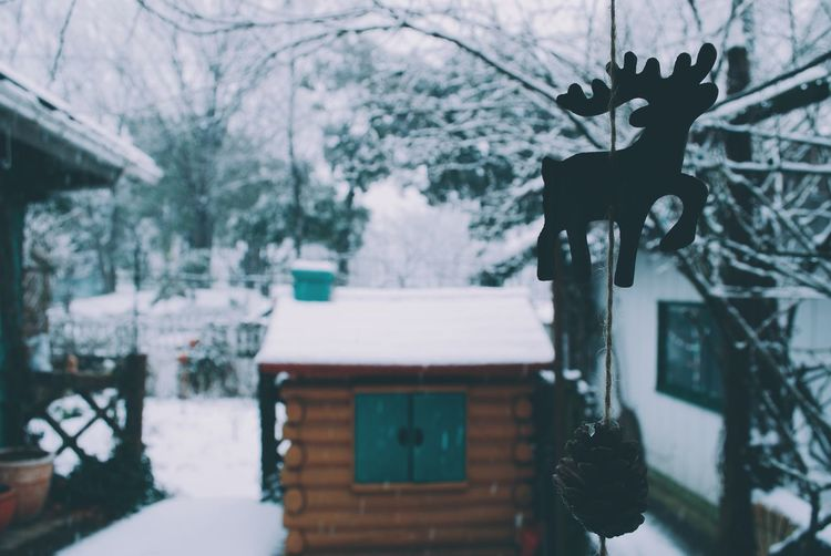 Close-up of reindeer and pine cone decor hanging in back yard during snowfall