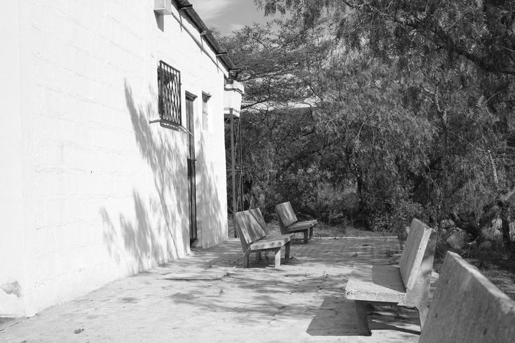 B&W yard Black And White Empty Places House Landscape Shadows & Lights Sunlight Sunlight And Shadow White House Yard B&W Magic