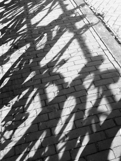 Backgrounds Bikes, Shadow Brick Wall Broken Cobblestone Cold Temperature Day Footpath Full Frame Geometry Obsolete Outdoors Pattern Pavement Paving Stone Protection Repetition Shadow Sidewalk Textured  Tiled Floor Winter