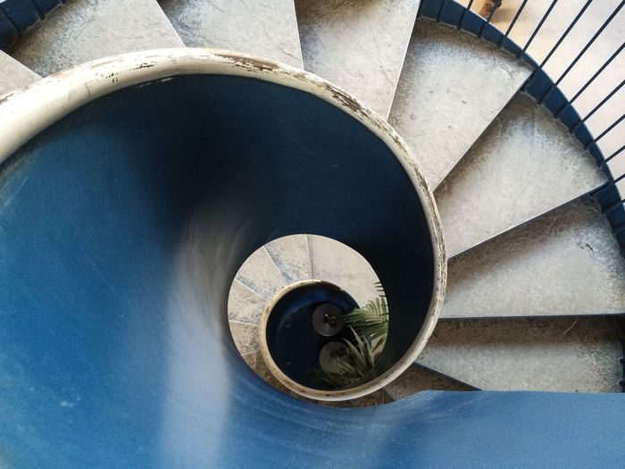 Learn & Shoot: Balancing Elements Spiral Staircase Spirals Blue Worn In Scratched Paint Plants Indoors Plant Abstract Architecture Architectural Detail Architectural Feature Architecture - Eye On Detail Color Palette