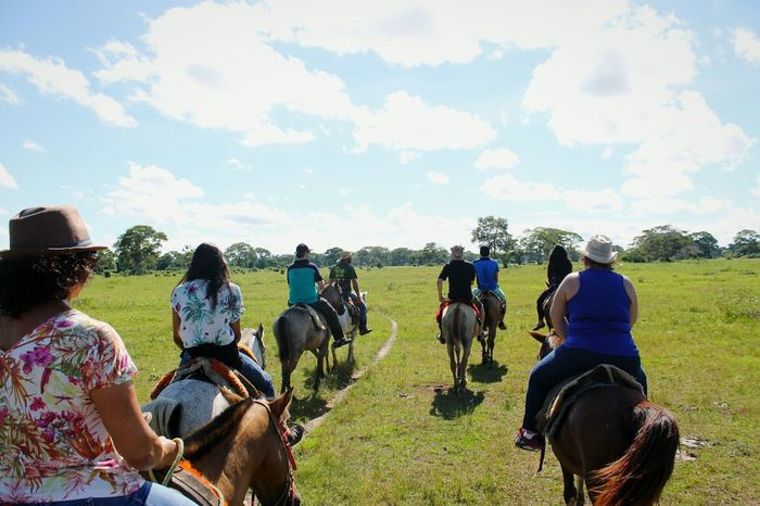 Nature Natureza Nature ♡ Natureza Brasil Natureza <3 Beautiful Nature NaturezaBela Horse Riding Horseriding Poconé