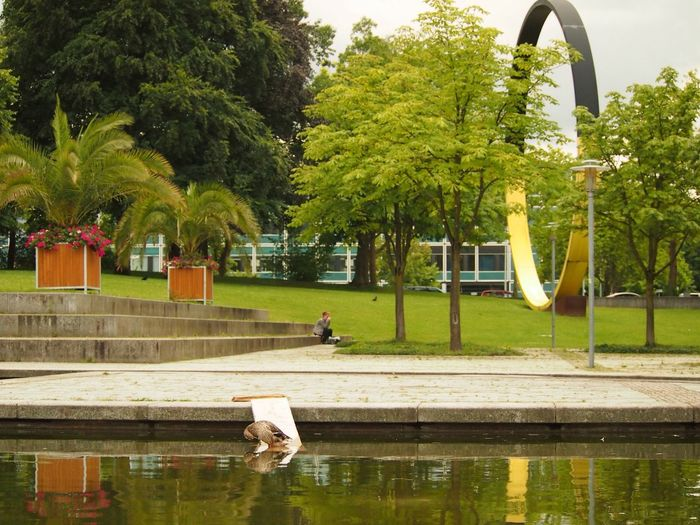 Urban Nature Clinic Garden