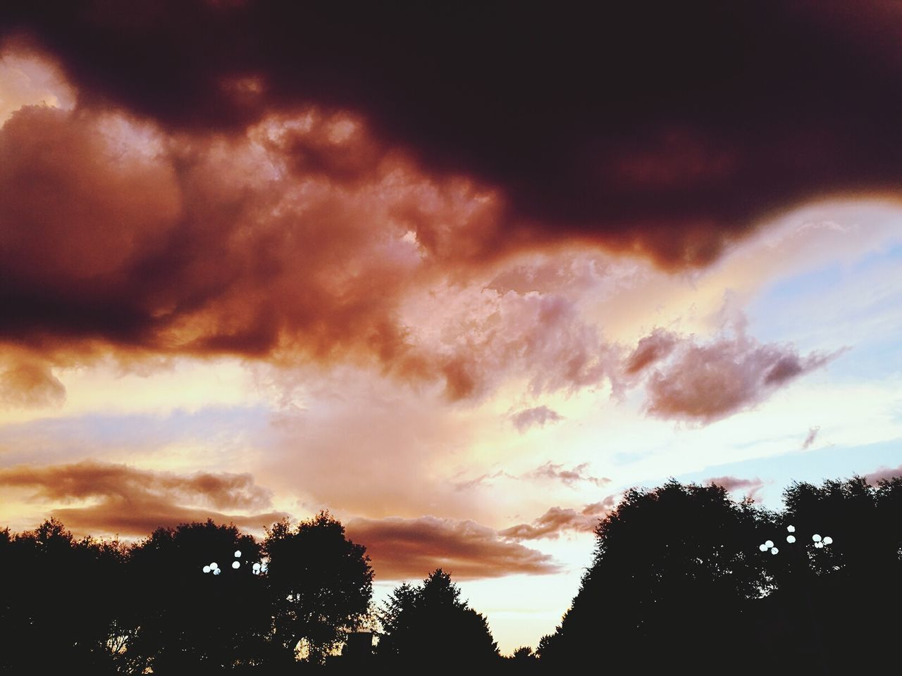 silhouette, sky, cloud - sky, beauty in nature, tree, sunset, nature, scenics, tranquil scene, tranquility, low angle view, no people, outdoors, day