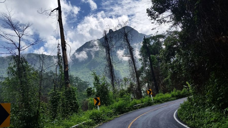 Doi Luang Chiang Dao Chaing Mai, Thailand Chiang Dao ChiangMai Thailand Doi Luang Chiang Dao Nothern Thailand Beauty In Nature Direction Landscape Mountain Nature On The Road One The Way Plant Road Tree