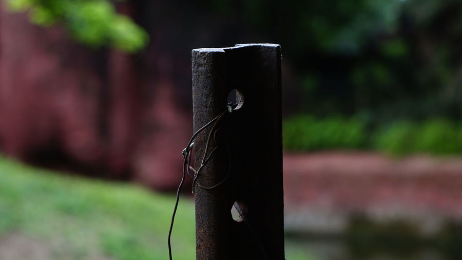 EyeEm Selects Focus On Foreground No People Day Water Nature Outdoors Close-up Tree Freshness Iron - Metal Iron Pole Nwin Photography Sony A6000