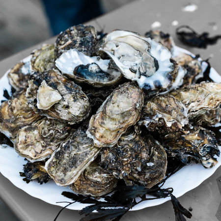 Location : Arz Island - Brittany Bretagne Brittany Huître  Island Life Close-up Food Food And Drink Freshness Healthy Eating Huitres Island Islandlife Mussel Outdoors Oyster  Oyster Plate Oyster Time Oysterbar Oystercatcher Oysters Plate Sea Sea Life Seafood Seaside