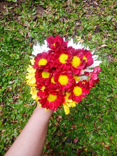 Flower Human