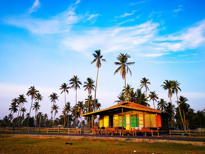 house in the village House Vacation Village Non-urban Countryside Calm Serene Sky Cloud - Sky Coconut Palm Tree Tropical Tree Palm Leaf Coconut