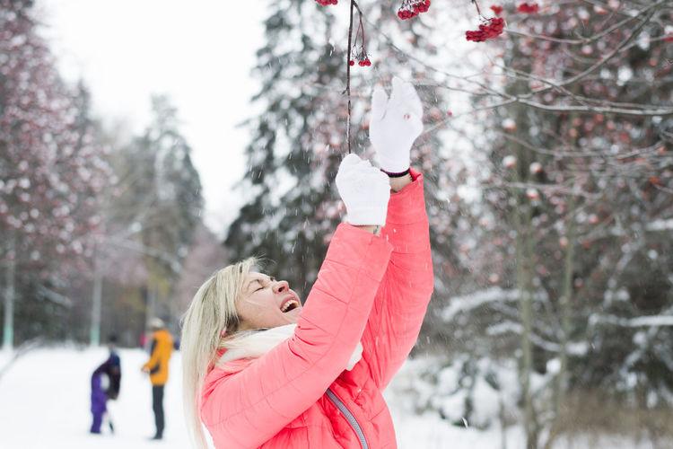 Woman Reaching Viburnum Berries On Tree