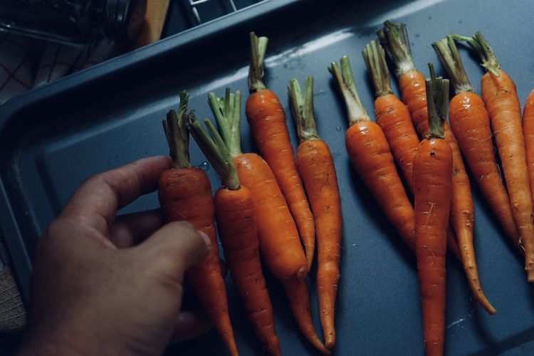 High angle view of hand holding vegetables
