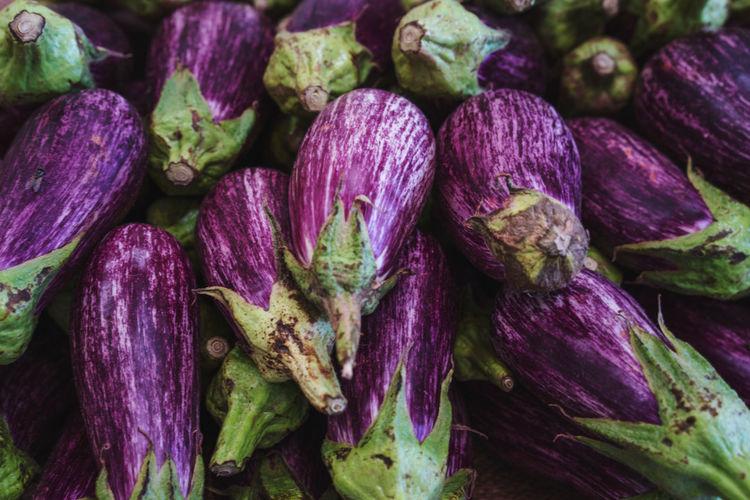 Purple egglpant full frame shot