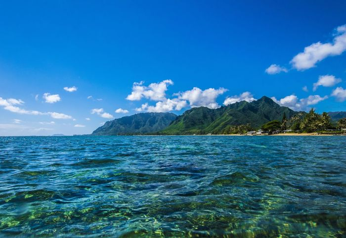 Sea Blue Cloud - Sky Sky Outdoors Mountain Landscape No People Tree Beach Water Scenics Nature Day Beauty In Nature UnderSea Oahu, Hawaii Hawaii Nature Tree Green Color Tranquil Scene Oahu Landscape_Collection Landscape_photography