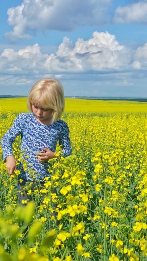 Canola fields of Saskatchewan so fun for the lil ones! Feel The Journey Taking Photos Hello World Enjoying Life Saskatchewan 2016 Happy People Goodlife Mydaughter❤️ Myworld Daughterlove Daughter The Portraitist - 2017 EyeEm Awards Live For The Story