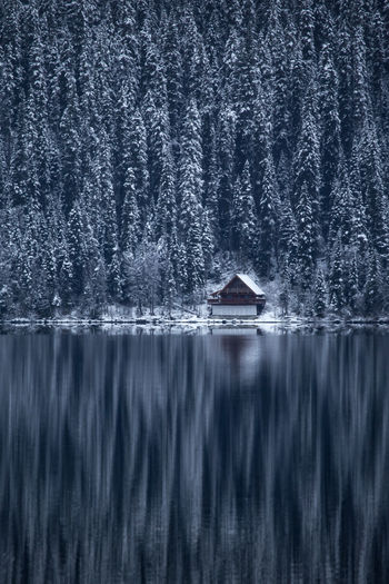 Late autumn conditions begin to give way to winter over a remote cabin on the waters edge at Bowron Lake. Isolated from the troubles of the world, it's places like this which provide much needed tranquility to hardy souls looking for some inner peace. Cariboo Mountains. British Columbia, Canada. Love Life, Love Photography Architecture Beauty In Nature Boathouse Day Lake Nature No People Outdoors Scenics Tree Water Wood - Material EyeEmNewHere Bc British Columbia Bowron Lake Cabin Forest Winter Reflection Cold Woods Cariboo Remote Wilderness The Great Outdoors The Architect Breathing Space Perspectives On Nature Perspectives On Nature Be. Ready. Be. Ready.