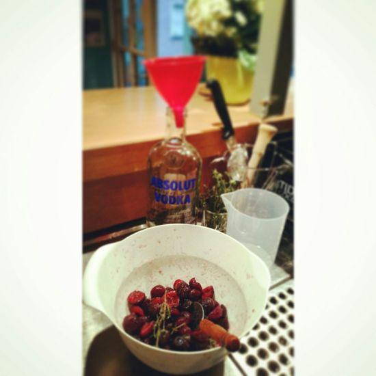 Sauerkischlikör ansetzen Bar Cherry Likör Homemade Yummy! Bad Cannstatt