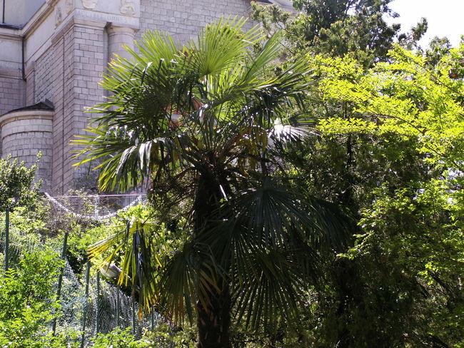 Leben wie Gott Erholung Pur Italien Keine Menschen Ruhe Und Stille Schőnheit In Der Einfachheit