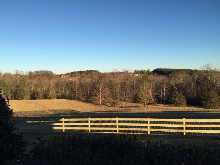 Rail fence in field