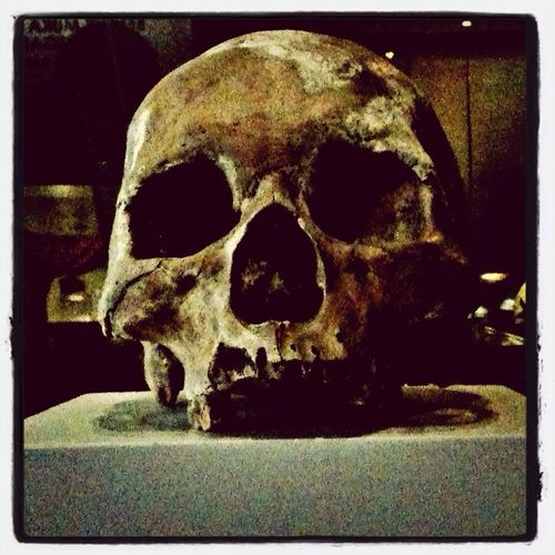 Taken in a heritage museum in Selangor, K.L. Roadtrip Check This Out Bones Skull