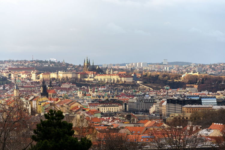 Prague panorama with St. Vitus Cathedral and Prague Castle - the biggest ancient castle in the world and residence of president, Czech Republic Hradčany Prague Castle Prague Castle Czech Republic Saint Vitus Cathedral Landmark Church Cityscape Panorama Skyline Sightseeing Praha Metropolitan St. Vitus Wenceslaus Adalbert Religion Architecture City History Red Attraction Beautiful Bohemia Building Capital Culture Czechoslovakia Eastern Europe Famous Gothic Green Landscape Medieval Old Travel Tourism Sky Winter Spring Sunny Weather Copy Space Horizontal