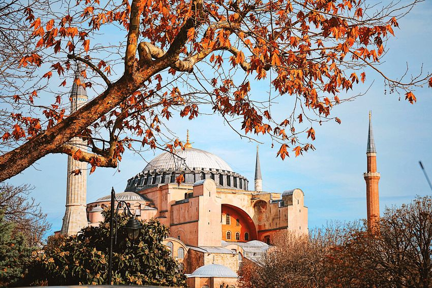 Ayasofya (Hagia Sophia) Ayasofya Ayasofyacamii AyasofyaMuseum Ayasofia🙈🤗 Ayasofya Museum Tree Architecture Built Structure Branch Religion Building Exterior Dome Travel Destinations Day Outdoors No People Bare Tree Place Of Worship Sky Nature