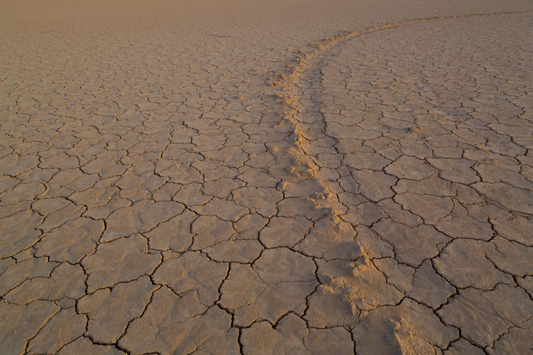 Close-up of cracked land