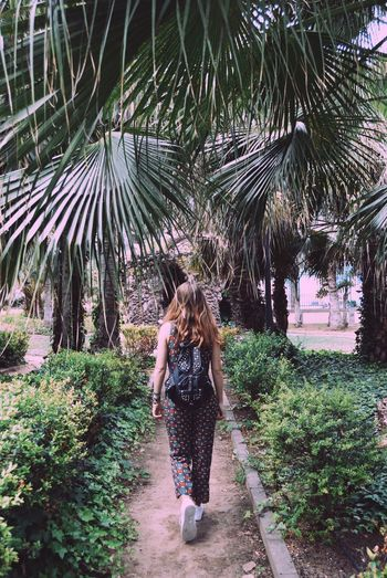 Rear view of woman walking on footpath amidst plants in park