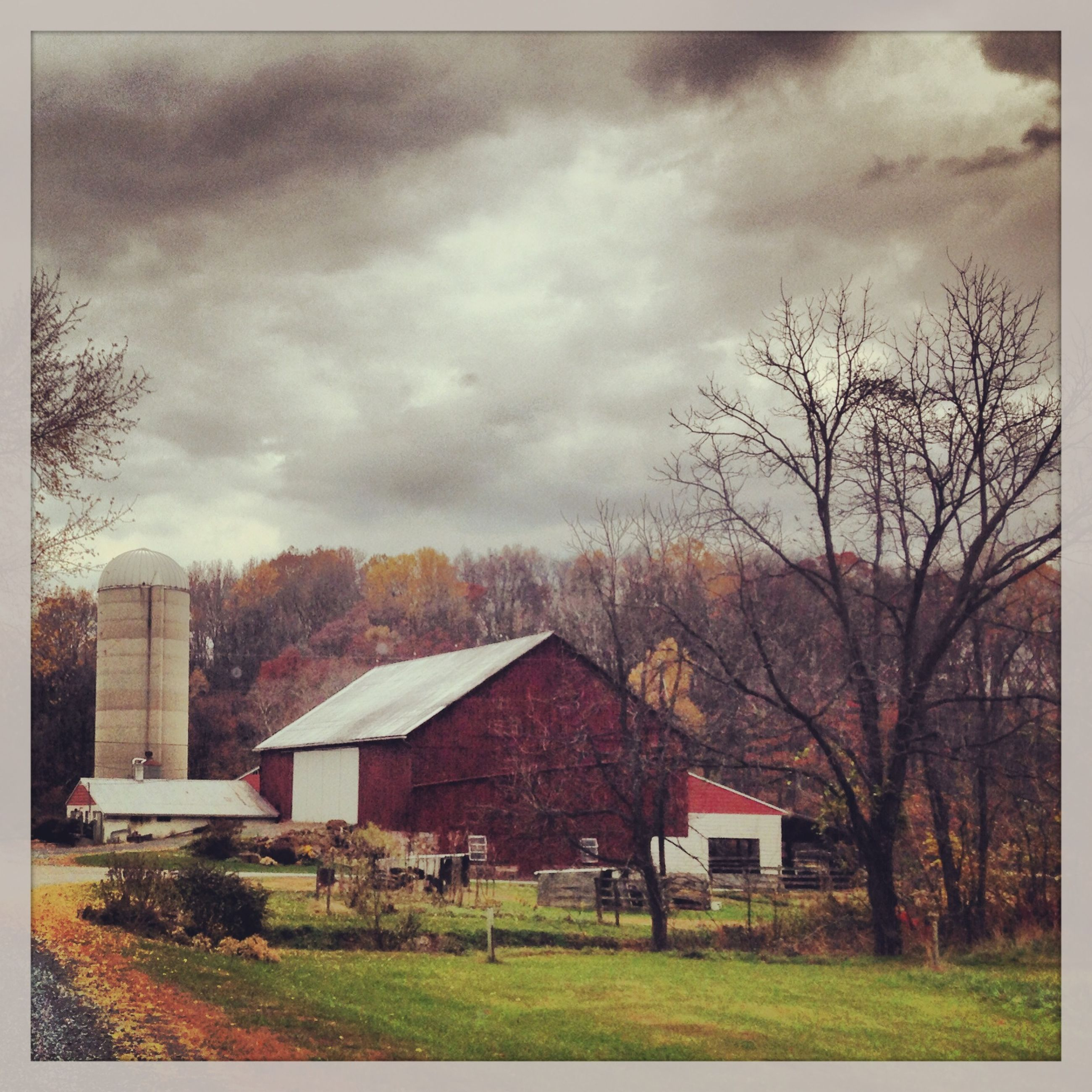 building exterior, architecture, built structure, sky, house, grass, cloud - sky, tree, field, cloudy, residential structure, bare tree, landscape, rural scene, weather, residential building, overcast, cloud, nature, grassy