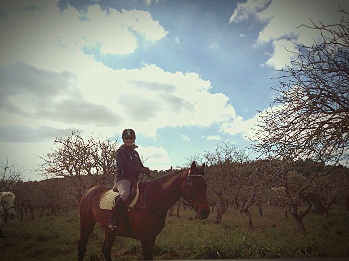 Horse Riding Trip Photo No Fail