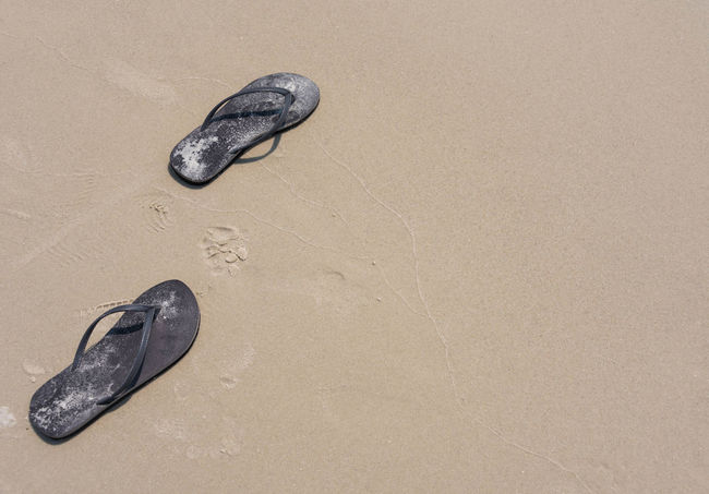 Beach Life Beach Photography Tranquility Beach Black Color Close-up Day Flip Flops Mammal Nature No People Outdoors Pair Relaxation Sand Tranquil Scene Vacation Destination