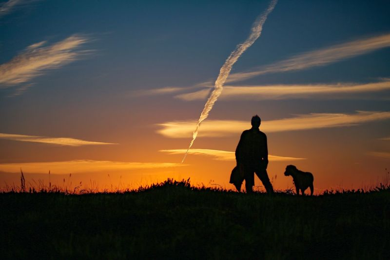 I have seen the best of you, and the worst of you, and I choose both. Sarah Kay Sunset Sky Silhouette Cloud - Sky One Animal Canine Dog Mammal Domestic Animals Animal Animal Themes Nature Pets Real People Domestic Leisure Activity Beauty In Nature Land Lifestyles Plant
