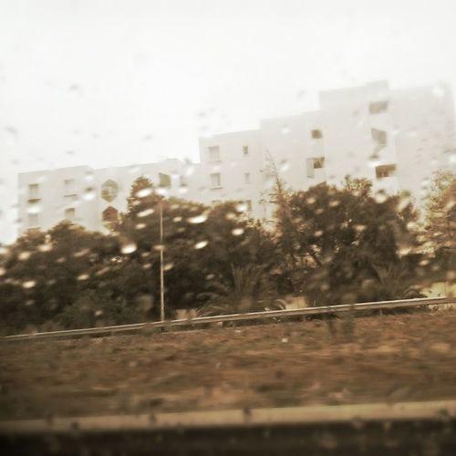 Rain Pluie Route Road mars march instagram instamoment instamorning