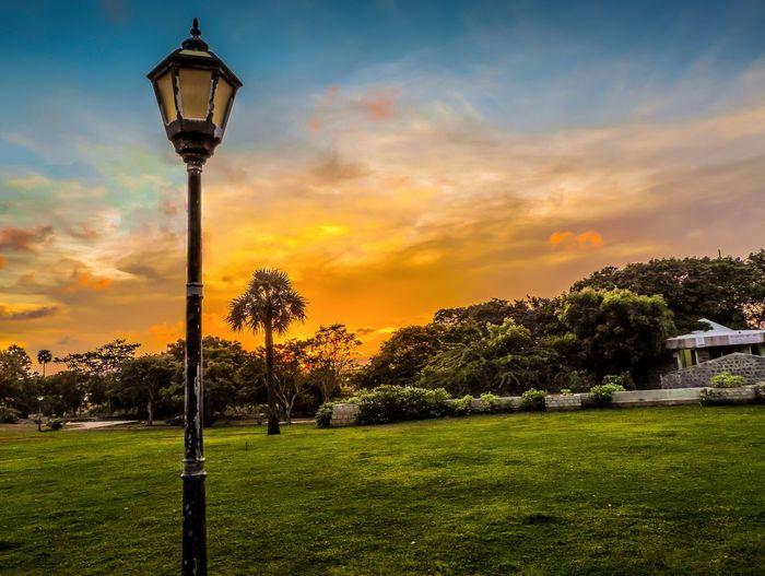 Scenery Landscape Sunlight Sunset Park Sky And Clouds Grass Chennai