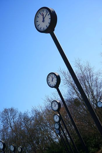 Low angle view of clock on tree against sky