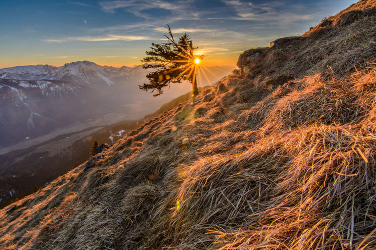 Bavaria Alps Sunset Travel Landscape Nature Outdoors Cloud - Sky MountainIgniting Day Beauty In Nature Tree Sky Horizon Alpenpanorama Nature Tourism Footpath Water Fog No People