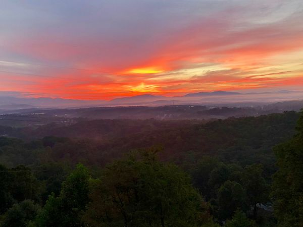 Today's Sunrise over the Smokies near Asheville. Sunrise Sky Scenics - Nature Beauty In Nature Environment Landscape Tree Cloud - Sky Tranquility Land Sun Plant Nature Fog Forest Orange Color Non-urban Scene Mountain Tranquil Scene No People