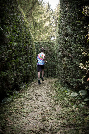 Maze Adult Adventure Boy Casual Clothing Childhood Children Only Day Forest Full Length Grass Nature One Person Outdoors People Plant Real People Tree Walking Young Adult