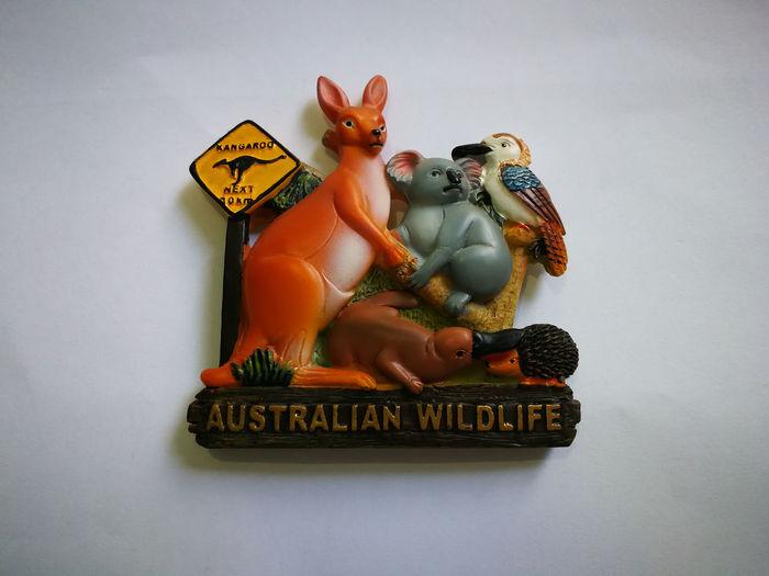 Refrigerator magnets from Australia Australia Fride Australia Souve Australian Wildlife Fridge Fridge Magnet Fridge Magnets FridgeMagnets Souvenir Souvenirs Souvenirs/Gift Shop Wildlife Wildlife Fridge Mag Wildlife Management Area