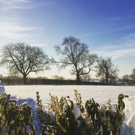 Countryside view #snow #winter#countyside Day