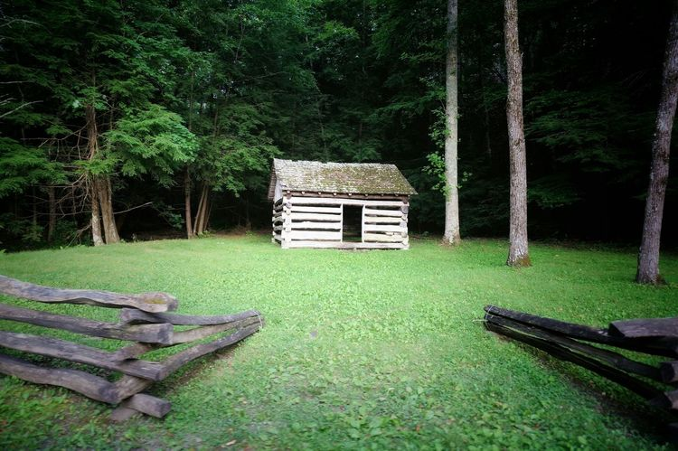 Great Smoky Mountains National Park Cades Cove Cabin EyeEm Nature Lover Woods Lonely Nature_collection