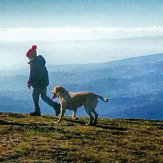 Prato Della Regina Pratedellaregina Toscana Tuscany Italia Italy Bobblehat Walk Dog