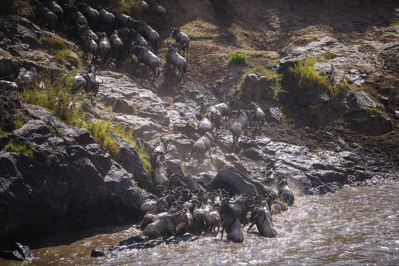 View of water flowing through rocks