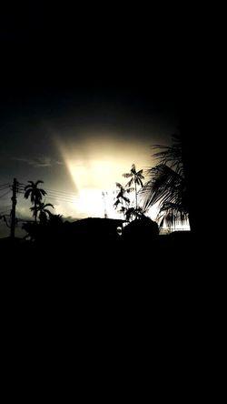 Tree Silhouette Sunset Nature Sky Cloud - Sky No People first eyeem photo
